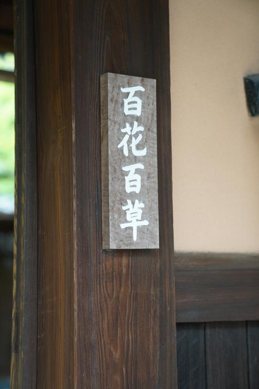 勝山健史 織物展:文化のみち『百花百草』